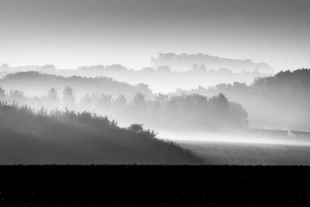 Campagne Picarde sous la brume